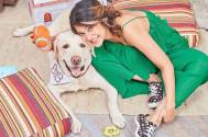 Jennifer Winget and dog Breezer