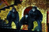 Babita Phogat and Vivek Suhag bring out a social message in their Nach Baliye 9 act; become gorillas being hunted in the jungle