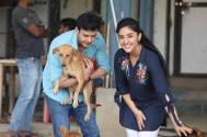 Pet love all over Patiala Babes set