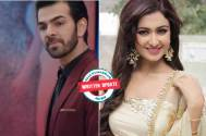 Kahaan Hum Kahaan Tum: Rohit sends a message to Raima about him moving on