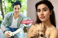 Ashish Dixit and Sheena Bajaj bags &TV's Laal Ishq