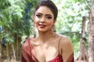 Check out Kasautii Zindagii Kay actress Pooja Banerjee's new post on her Nach Baliye 9 injuries!