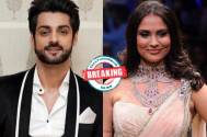 Karan Wahi and Lara Dutta to star in Hotstar's next