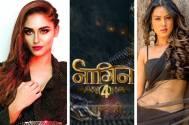 Naagin 4 : After Krystle & Nia THIS Ishq Mein Marjawan actress to play Naagin in