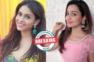 Rachana Parulkar to replace Chhavi Pandey in Star Plus' Namah