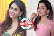 Rachana Parulkar to replace Chhavi Pandey in Star Plus' Namah