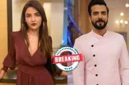 Colors' Naagin 4: Jasmin Bhasin joins Nia Sharma as Naagin; Manit Joura to play the male lead