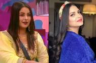 Bigg Boss 13: Himanshi Khurana wants Shehnaaz Gill to apologise to her parents