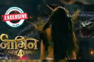 Revealed: Launch date of Colors' Naagin 4