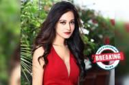 Preetika Rao bags her next web-series