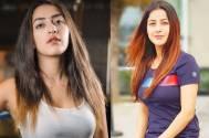 Bigg Boss 13: Punjabi actress Divya Sharma calls Shehnaaz Gill 'fake'