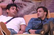 Sidharth Shukla and Asim Riaz