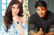 Bigg Boss 13: Akanksha Puri finds Sidharth Shukla's violent behaviour unnecessary?