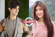 Rohan Mehra teams up with Arishfa Khan for a project