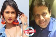 Krissan Berretto roped in for Gurudev Bhalla's next for Star Plus