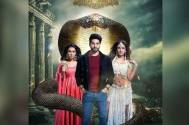 Naagin 4 receives mixed reviews from the audience