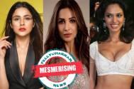Shehnaaz Gill, Malaika Arora and Mallika Sherawat