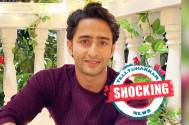 Shocking! THIS is what Shaheer Sheikh will do if he woke up as a woman