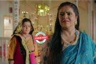 Yeh Rishtey Hai Pyaar Ke: Meenakshi gets Mehul kidnapped