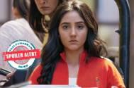 Patiala Babes: Mini sacrifices her dream job for Arya