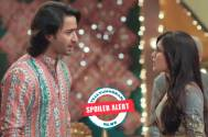 Yeh Rishtey Hain Pyaar Ke: Abeer and Mishti's mutual separation, Meenakshi's blackmailing truth out