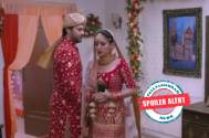 Kundali Bhagya: Preeta requests Prithvi to backout