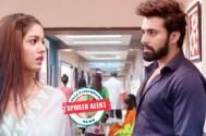 Bepanah Pyaar: Raghbir to get jealous of Pragati-Sahas's closeness