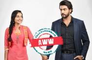 Rishton Ka Manjha: AWW! Diya-Arjun's love breaks all odds