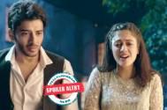 Yeh Jaadu Hai Jinn Ka: Three new villains in Aman-Roshni's fairy love tale