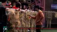 BB13 Day 55 | Nomination Special | Friends turn enemies in this week's nominations