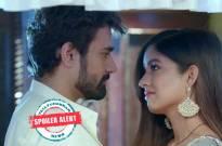 Bepanah Pyaar: Raghbir and Pragati's love union, Sahas pissed off
