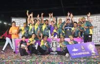 Grand Finale of DPL