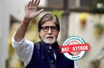 BAT ATTACK! Amitabh Bachchan shares details of how bats are at his home Jalsa are terrifying the Bachchan family