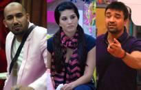 Match these Bigg Boss wild card entrants and their seasons.