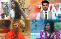 Match these Bigg Boss contestants with their respective seasons.