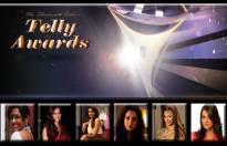 Best Actress in a Negative Role at the 13th Indian Telly Awards