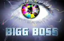 Bigg Boss inmates and their one-liners