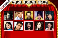 TV actors and their favourite on-screen jodis of 2013