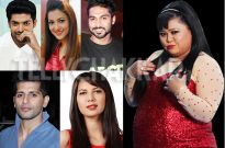 Khiladis Gurmeet, Gauahar, Salman, Karanvir and Rochelle to perform; Bharti to have a Swayamvar during IGT finale