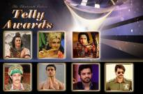 13th Indian Telly Awards: Best Actor in a Lead Role (Male)