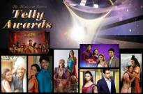 13th Indian Telly Awards: Best Daily Serial