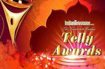 Fourteenth Indian Telly Awards