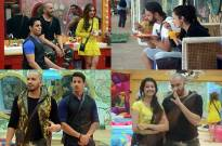 Synopsis: Bigg Boss Double Trouble Day 24