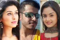 Bengali actresses on a pout mania