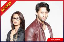 Shaheer Sheikh and Erica Fernandes