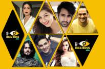 Celebrities MOST LIKELY to be in Bigg Boss 11