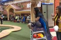 Priyank and Sapna lash out at Vikas; Hina insults Akash on Bigg Boss 11