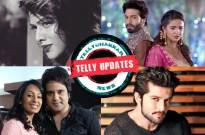Nia Sharma single?, Suraj-Chakor recreates 'Betaab' scene, Kashmira-Krushna share first click of their lifelines and other Telly updates…