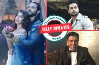 Ashish-Sonarika's lip-lock, Shaleen's 'Twin' brother, Ram Kapoor's new avatar and other Telly updates