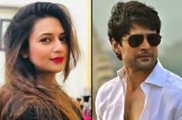 Rajeev Khandelwal to romance Divyanka Tripathi